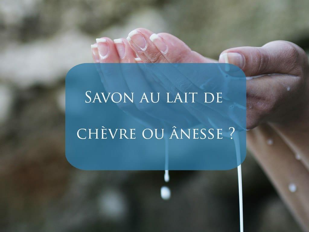 savon au lait de chèvre et au lait d'ânesse
